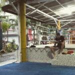 онлайн тренировки, программа, тренировки, дома , бокс, муай тай